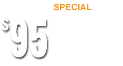 Get A Brain Map For $95